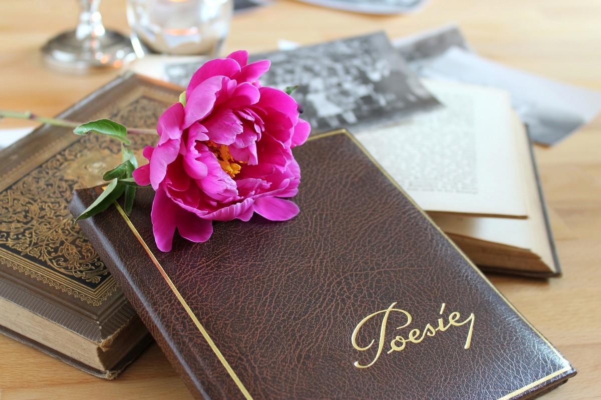 9 способов того, как поэзия улучшает знание английского языка