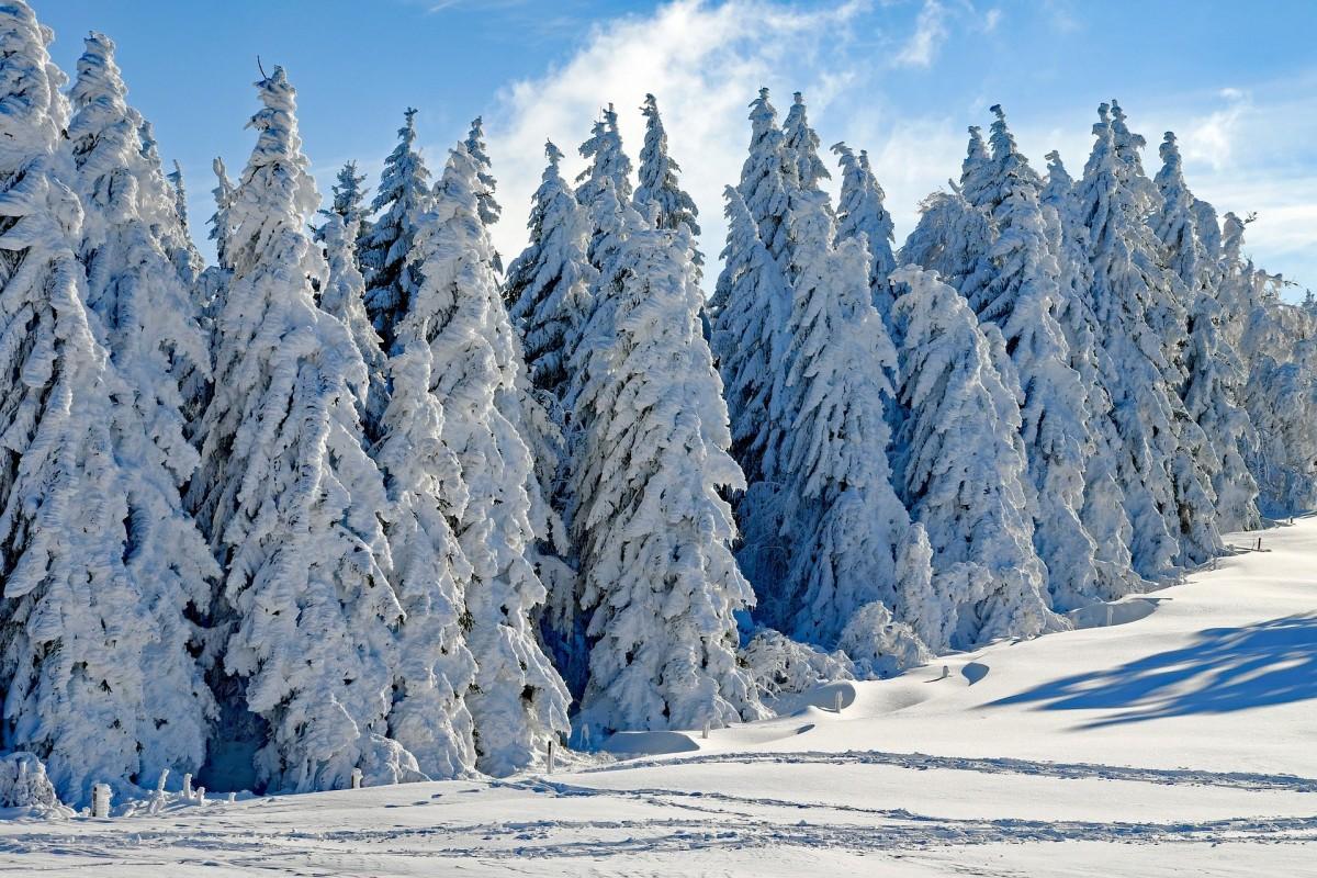 Как говорить о снежной погоде на английском языке